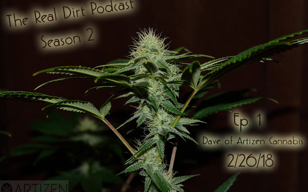 Craft Cannabis with Dave Perkins – The Real Dirt with Chip Baker