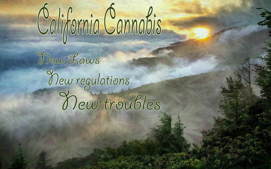 California Cannabis Laws and Growers