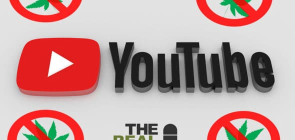 youtube removing cannabis content