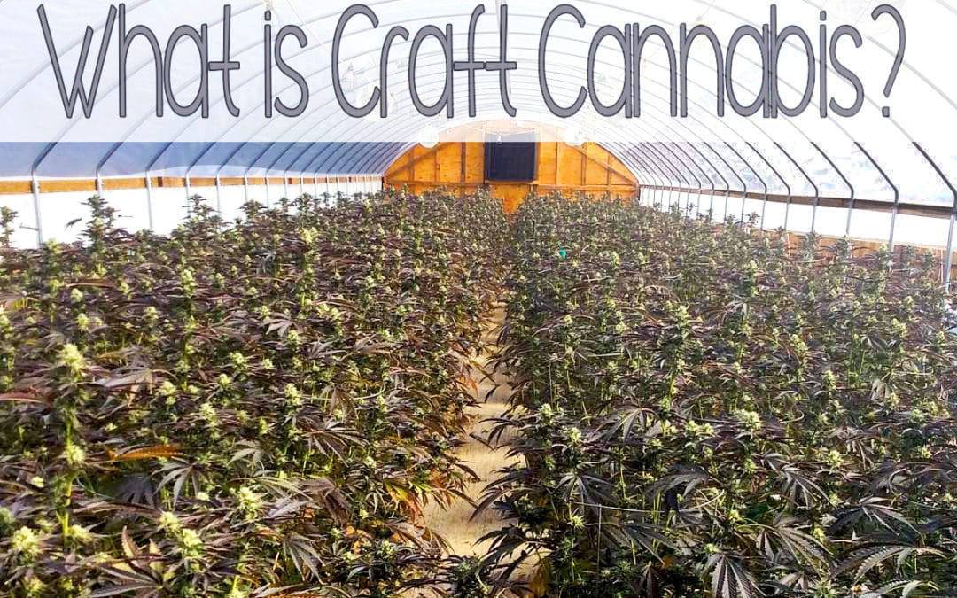 What is Craft Cannabis?