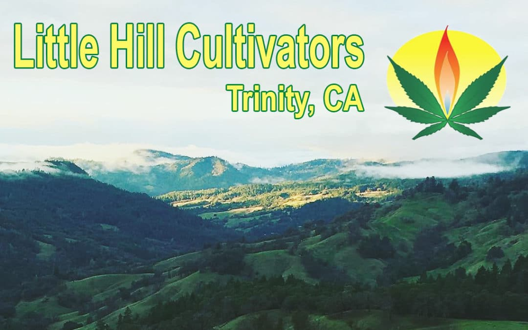 Little Hill Cultivators Revisited