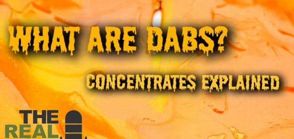 what are dabs? cannabis concentrates explained