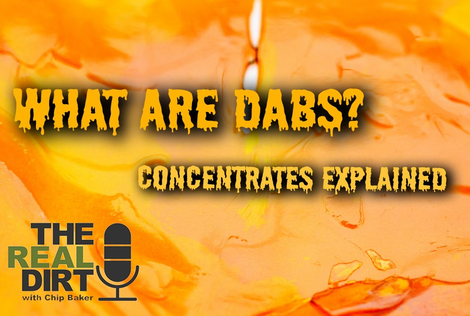 What Are Dabs? Concentrates Explained