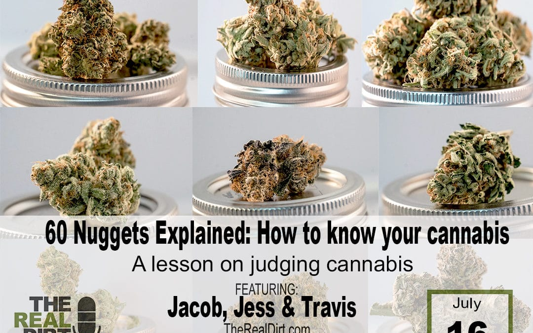 60 Nuggets Explained: how to know your cannabis