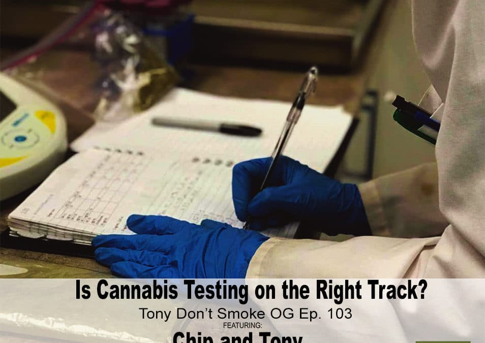 Cannabis Tests: fact or faux?