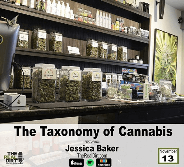 The New Taxonomy of Cannabis