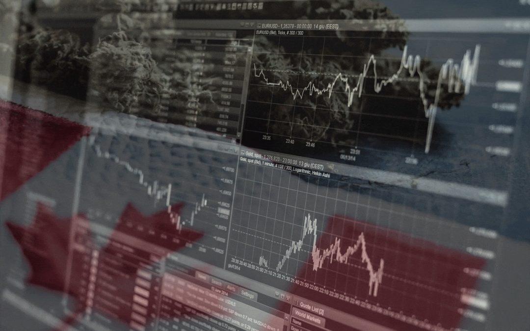 Cannabis Stocks: Understanding the Market