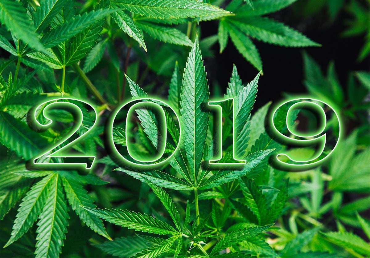 new years resolutions for the cannabis industry