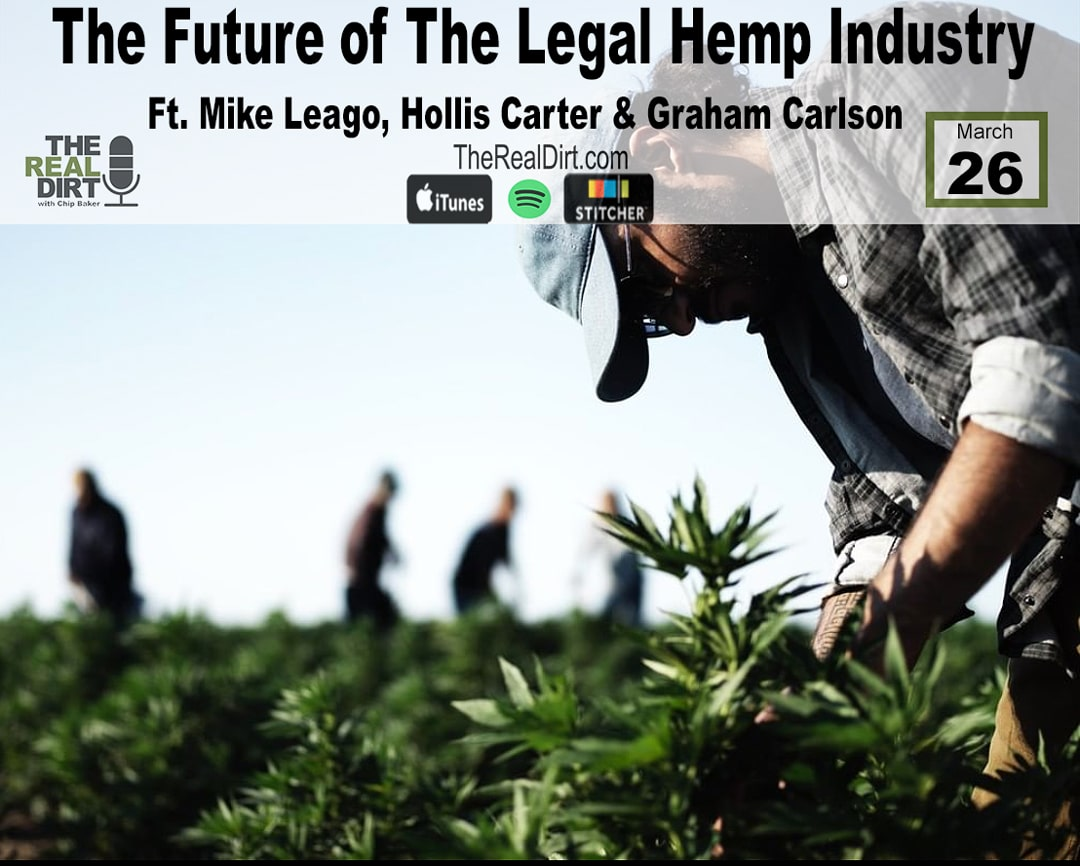 the future of the legal hemp industry