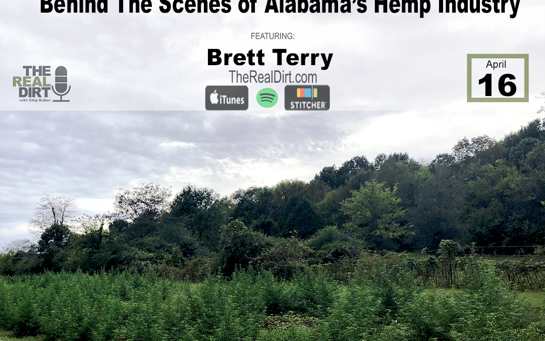Inside The Alabama Hemp Industry