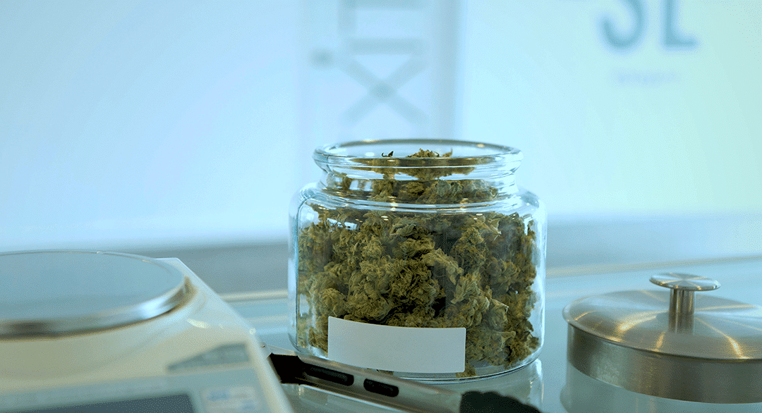 Cannabis Dispensary Jobs: Tips for success