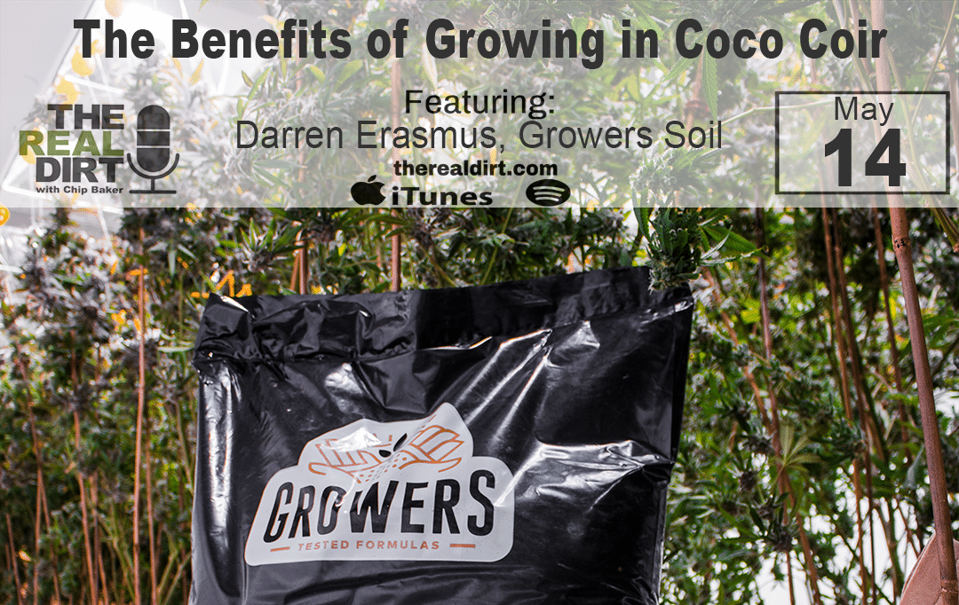 Why you should grow in coco coir