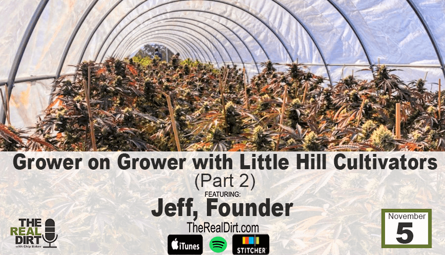 cannabis grower interview with little hill cultivators