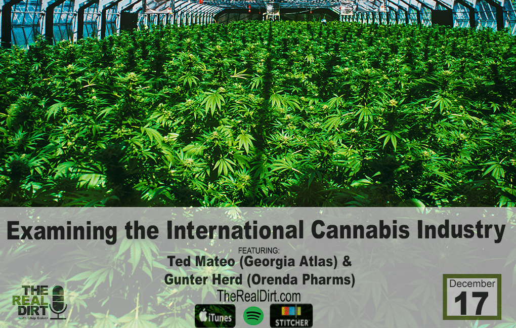 Interview with international cannabis growers