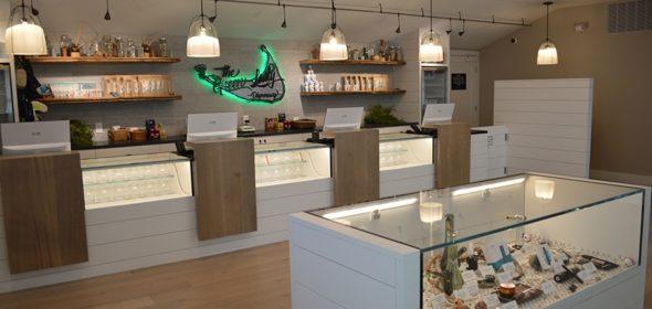 are cannabis dispensaries closing?