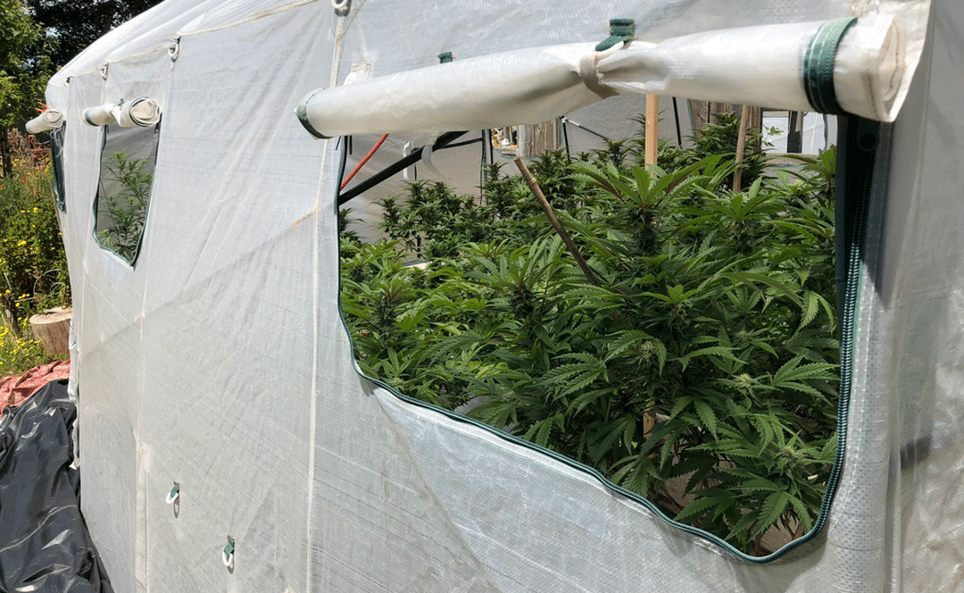 2020 Outdoor Grow Prep Guide