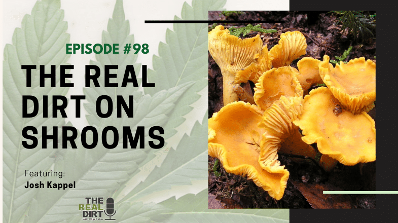 The Real Dirt on Shrooms with Josh Kappel