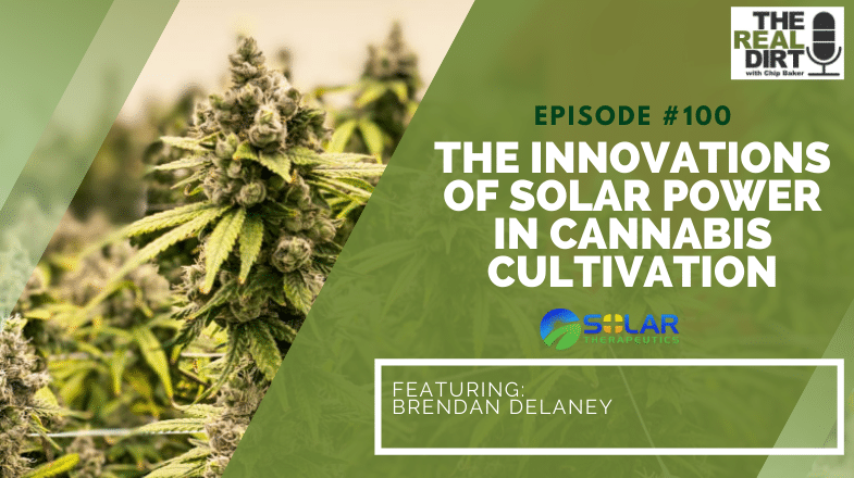 The Innovations of Solar Power in Cannabis Cultivation with Brendan Delaney