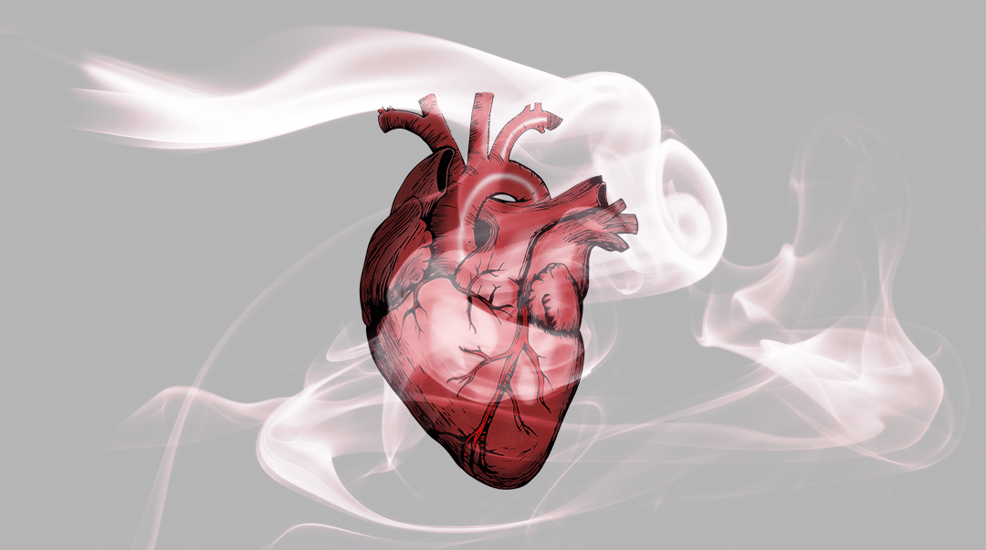 heart attacks from cannabis