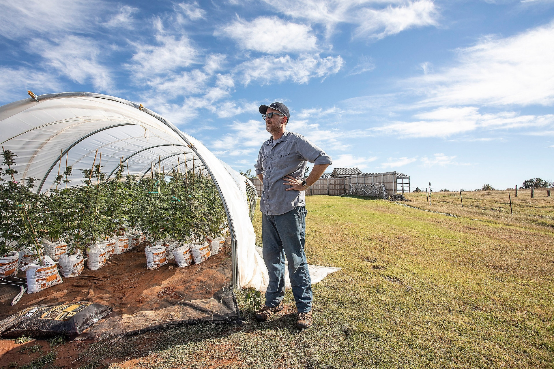 How oklahoma became the largest cannabis market in the country