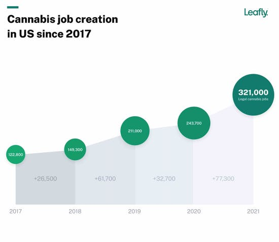 cannabis jobs exceed 300,000 in the US