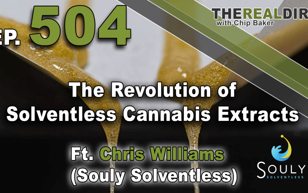 The Revolution of Solventless Cannabis Extracts