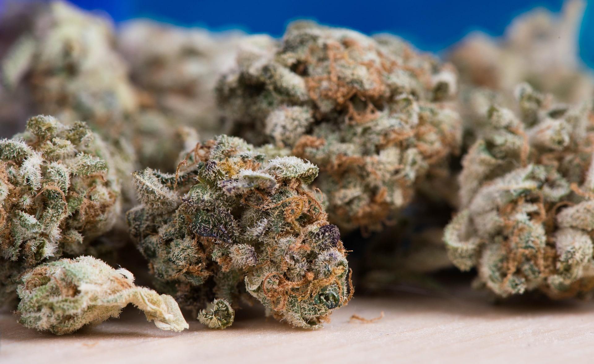 Texas house votes to decriminalize marijuana