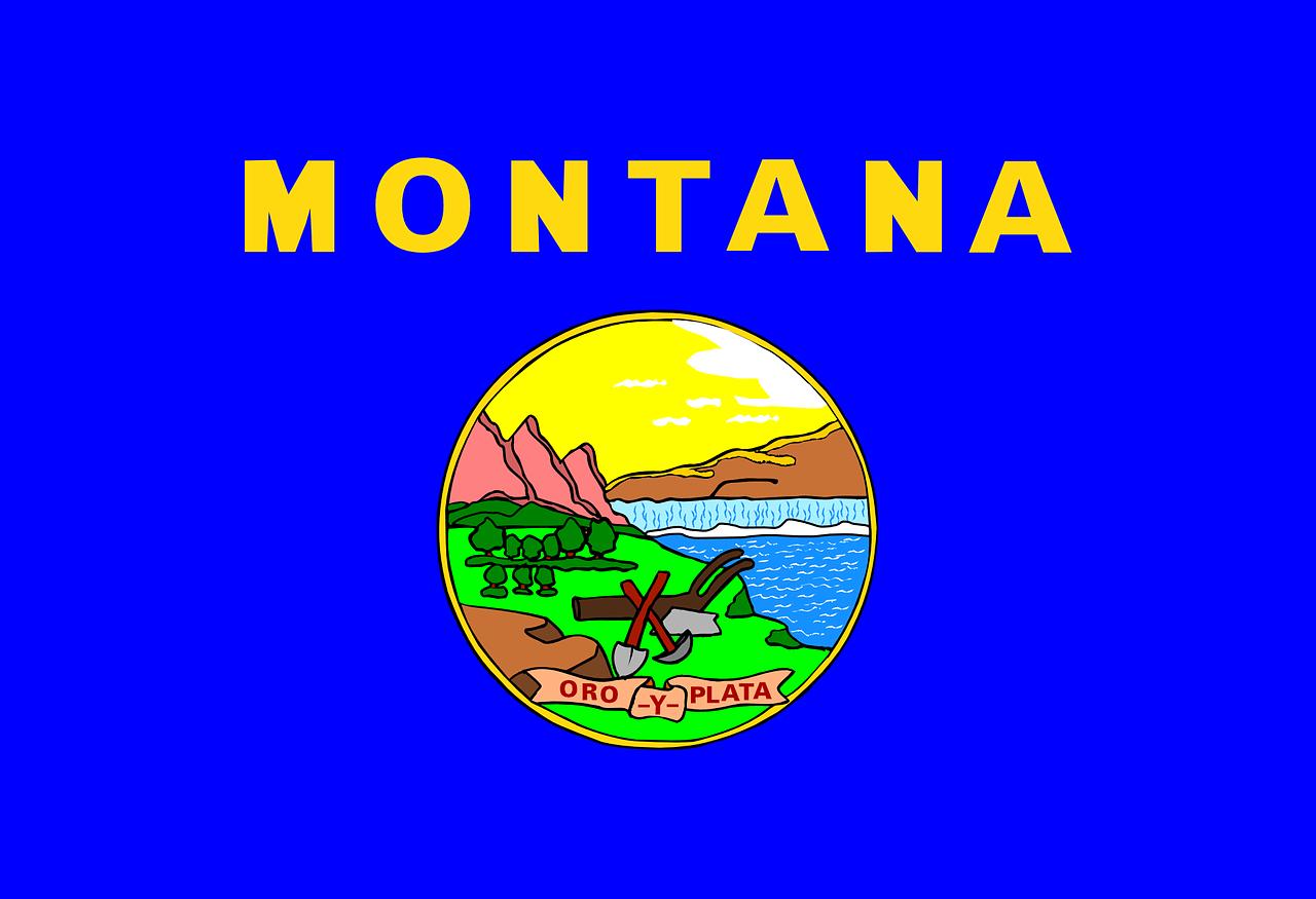 Montana marijuana legalization implementation passes through the senate