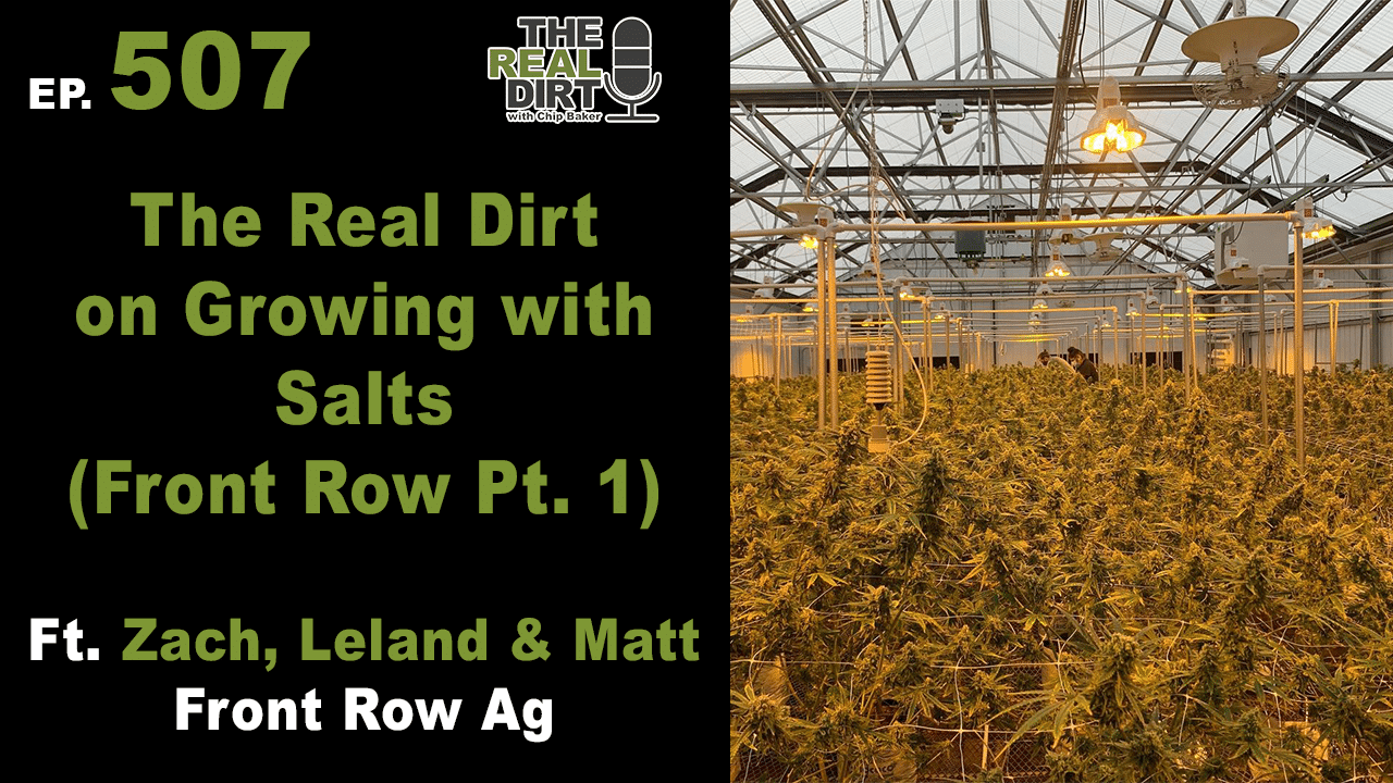 Growing cannabis with salt fertilizers and powder nutrients