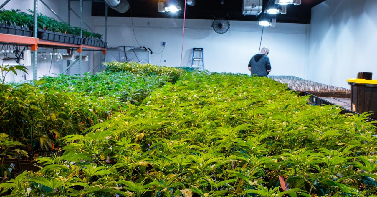 Massachusetts recreational cannabis sales top $2 billion