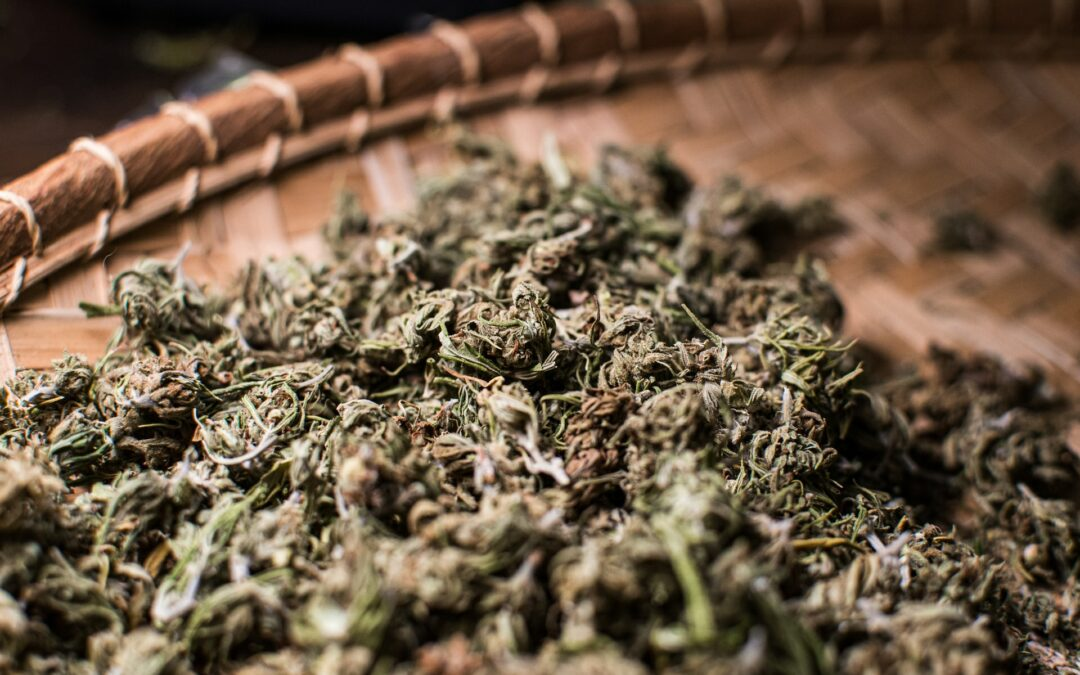 Is Weed Legal in Italy? Yes and No.