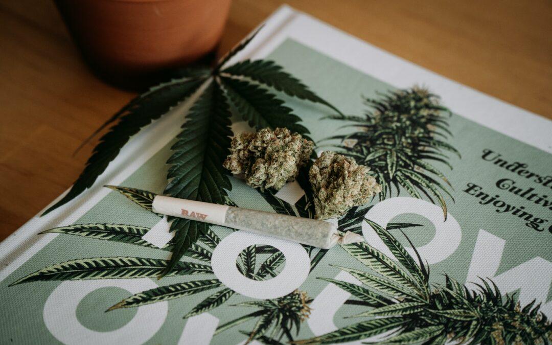 Oklahoma recreational cannabis petition filed