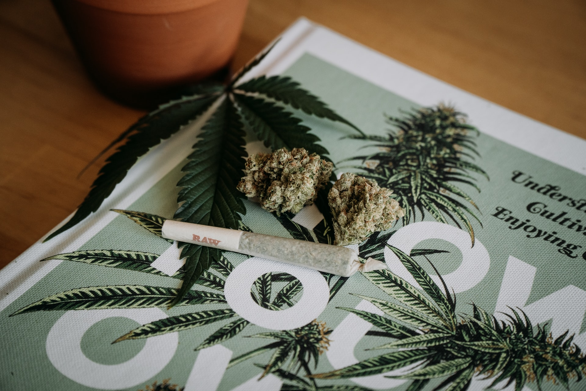 a petition to legalize Oklahoma recreational cannabis has been filed in the state